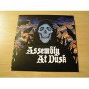 "ASSEMBLY AT DUSK ""Assembly at Dusk"" 12""LP"