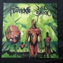"""ACID SPEECH/PESTICIDE split 12""""LP"""