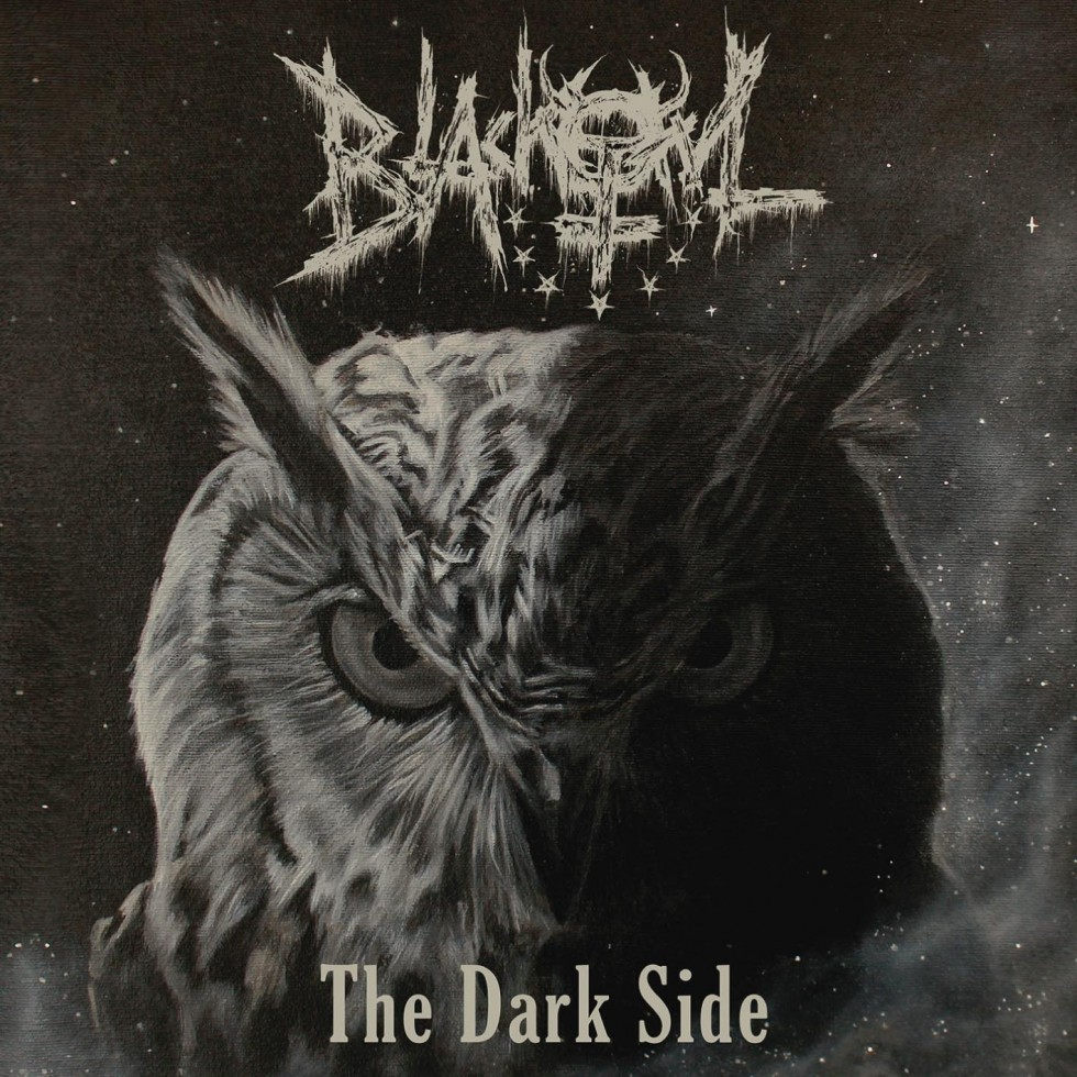 Quels sont vos derniers Achats Metal ? - Page 35 Blackowl-the-dark-side-cd