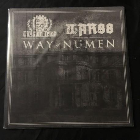 "DIVISION TRIAD/WAR 88 split 12""LP"