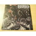 "BANISHED FROM INFERNO ""Minotaur"" 12""LP"