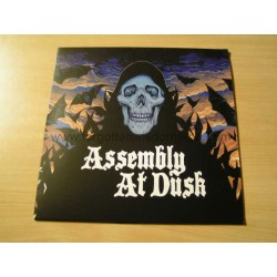 "ASSEMBLY AT DUSK ""Assembly at Dusk"" 12""LP"