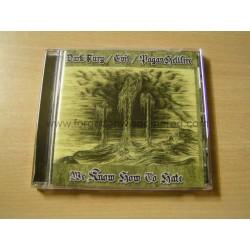 DARK FURY/EVIL/PAGAN HELLFIRE split CD