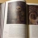 UNFATHOM - Ronald Zieger - Book