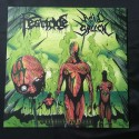 "ACID SPEECH/PESTICIDE split 12""LP"