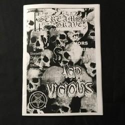 ACID VICIOUS Zine Hors Série 1