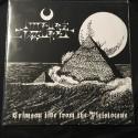 "IMPURE ZIGGURAT ""Crimson Tide from the Pleistocene"" 12""MLP"